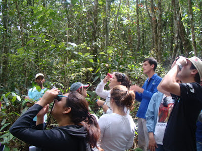 XXXII Curso de Identificação em Campo das Famílias Botânicas da Mata Atlântica