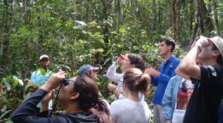 cursos presenciais botanica