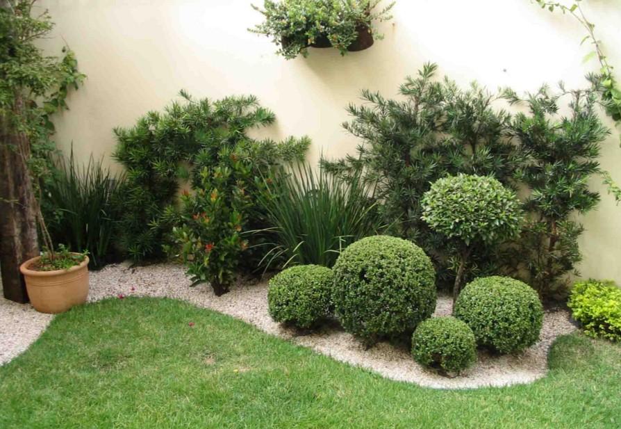 Paisagismo e Plantas Ornamentais
