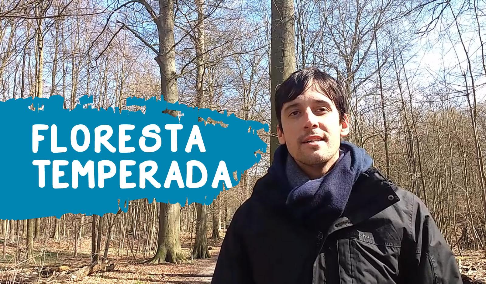 Floresta Temperada Europa