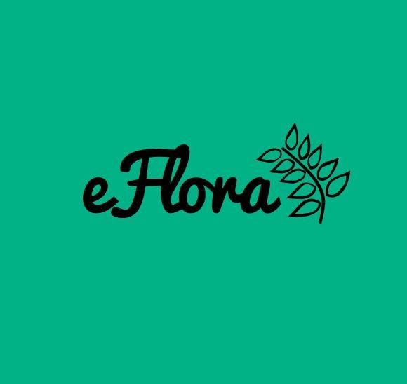 Escola On-line de Educação Ambiental e Botânica