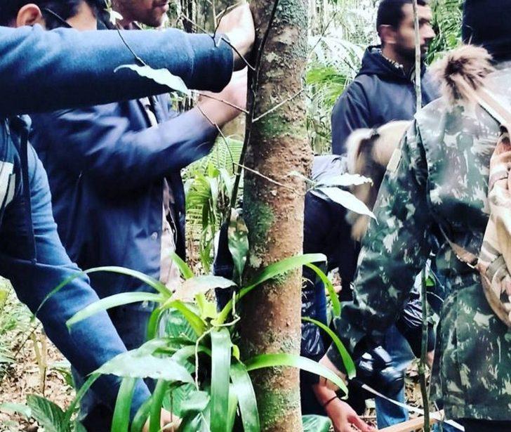 V Curso de Verão – Do Campo à Análise dos dados: O Inventário Florestal para fins de licenciamento ambiental