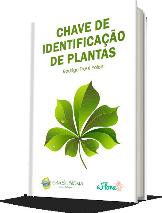 Chave de Identificação de Plantas da Brasil Bioma
